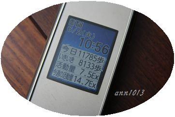 e0232963_20545180.jpg
