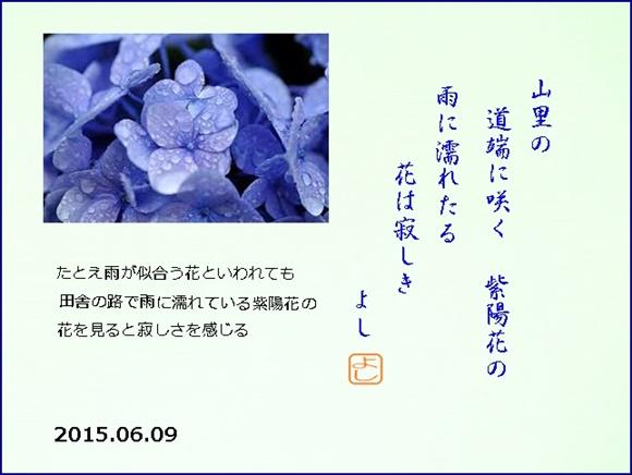 a0290852_2163275.jpg
