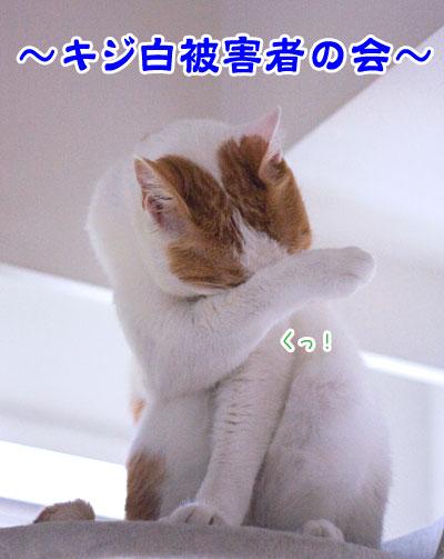 a0119470_22375579.jpg