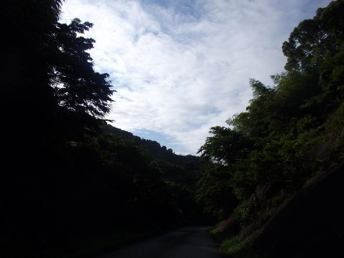 a0054240_20124497.jpg