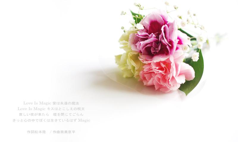 c0101341_20112676.jpg