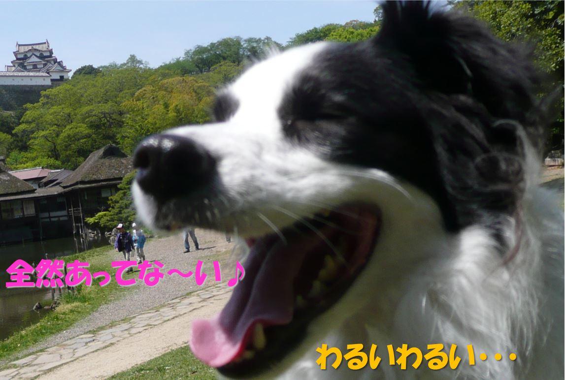 c0147241_1012589.jpg