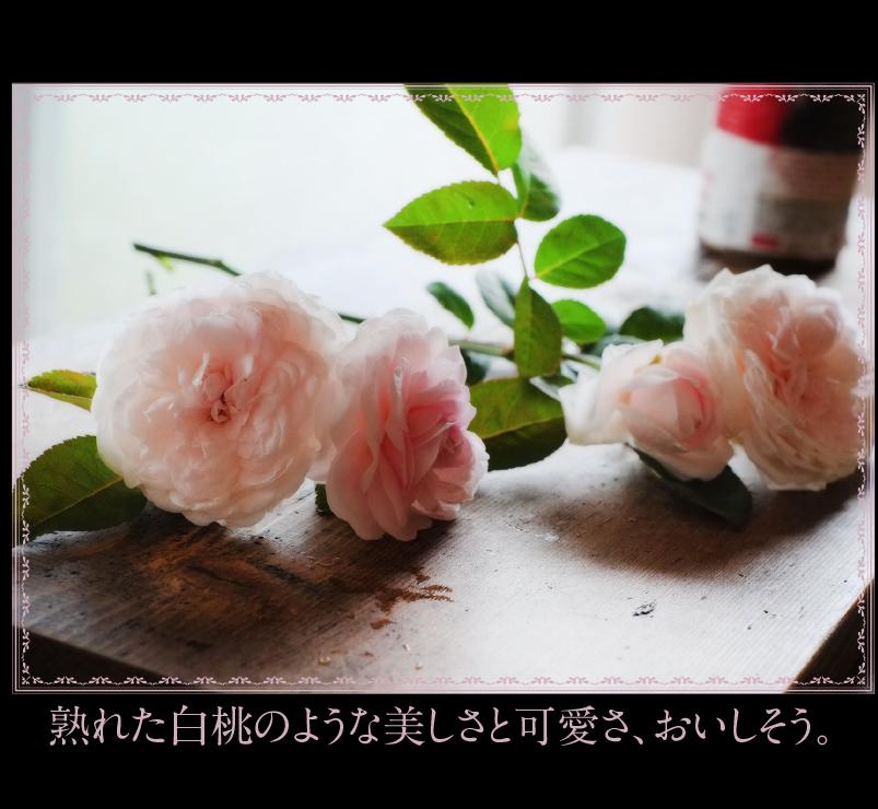 c0354952_22075064.jpg