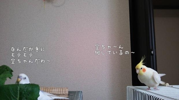c0322903_00080159.jpg
