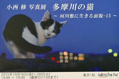 c0194541_13363990.jpg