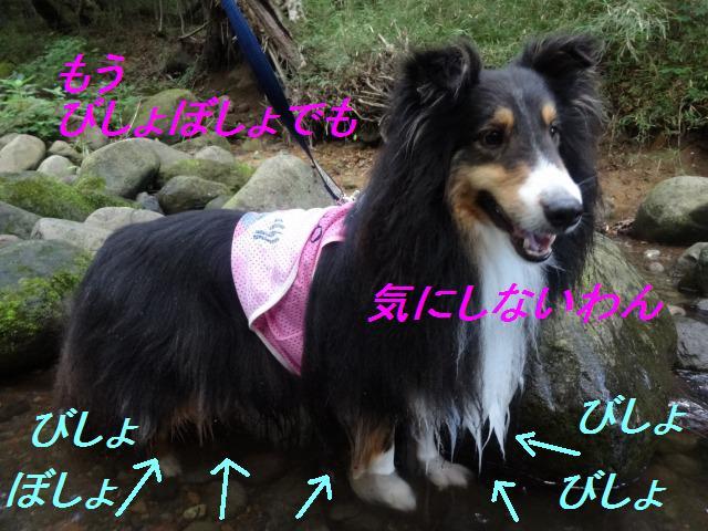 e0195743_15323877.jpg