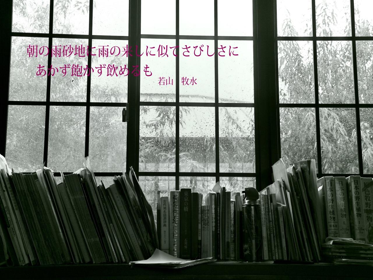 c0008948_16321234.jpg