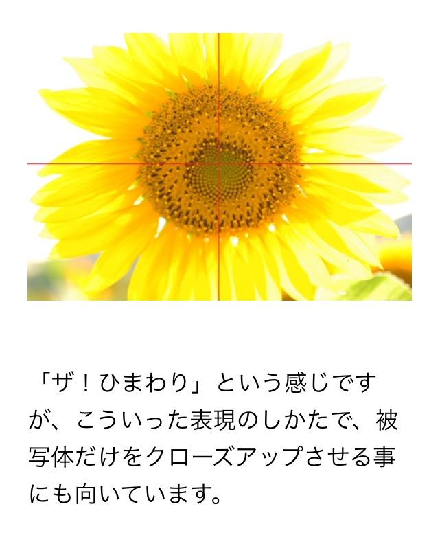 a0267766_13102270.jpg