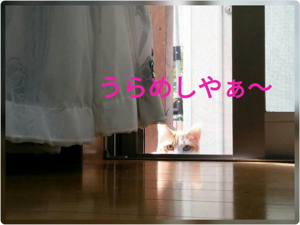 a0289878_12454996.jpg