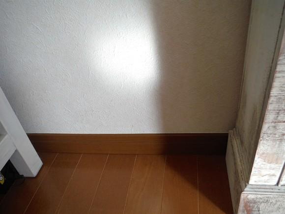 a0207996_1204460.jpg