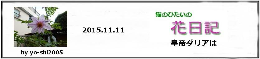 e0033229_19491414.jpg