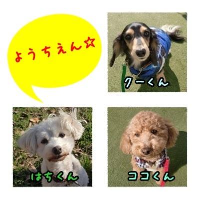 a0338800_20255936.jpg