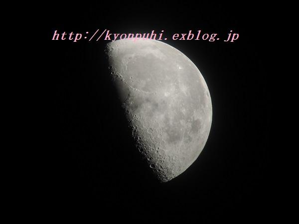 e0087008_12552690.jpg