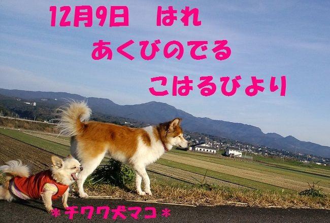 c0025171_10512849.jpg