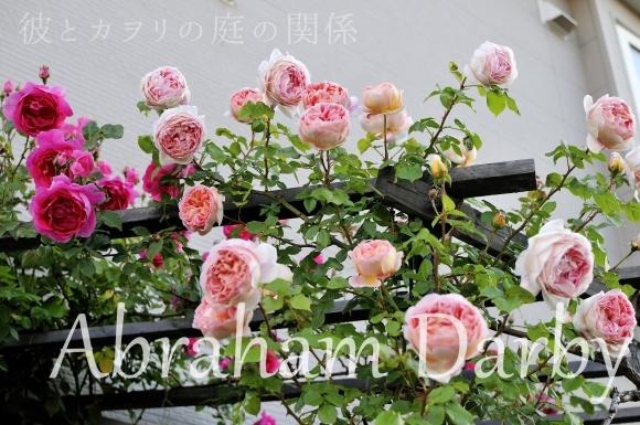 c0365716_18344618.jpg