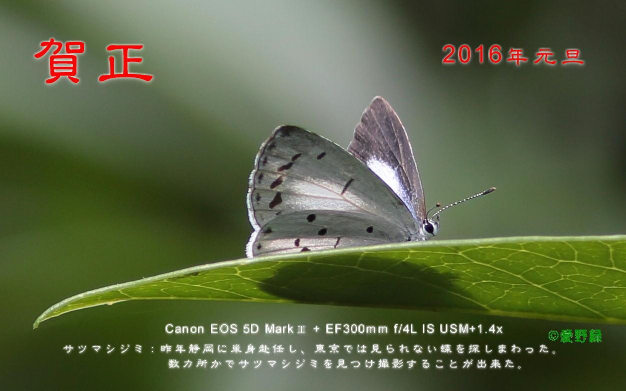 c0048196_21303534.jpg