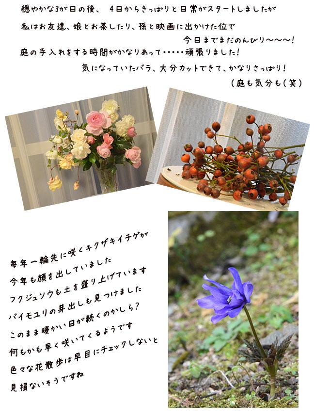 e0020954_1681853.jpg