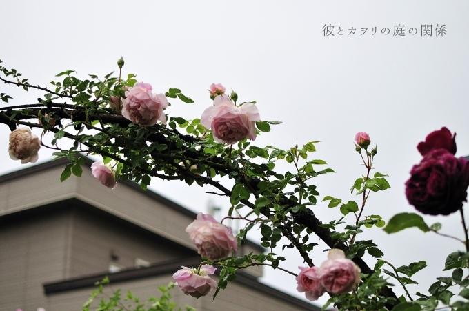c0365716_14020325.jpg