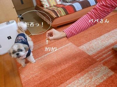 c0261346_1904478.jpg