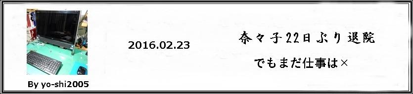 e0033229_19282115.jpg