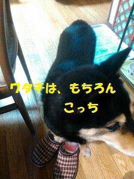c0211642_20503946.jpg