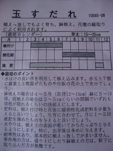 c0322794_18404231.jpg