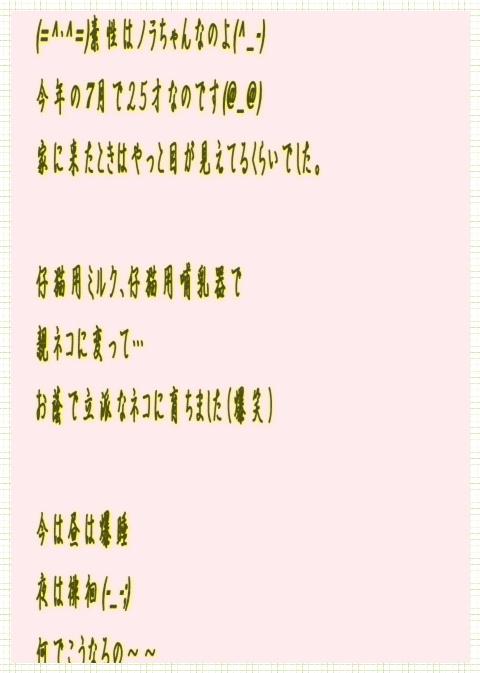 e0255638_16465349.jpg