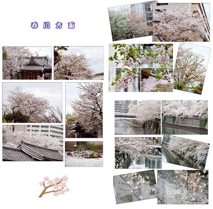 c0051107_10404523.jpg
