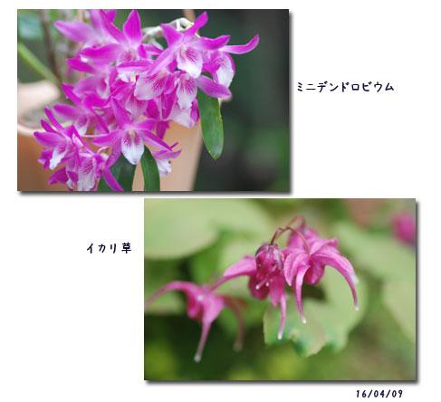 c0051105_1781872.jpg