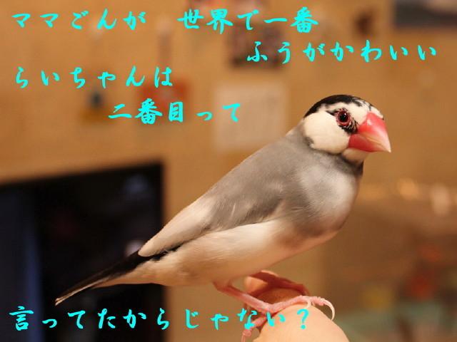 c0365734_22393626.jpg