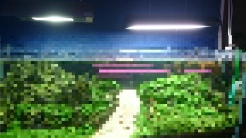 e0219497_13103780.jpg