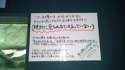 c0017046_11261959.jpg