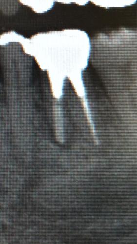 a0167308_19231431.jpg