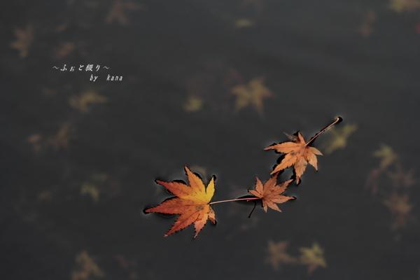 c0332548_08022696.jpg