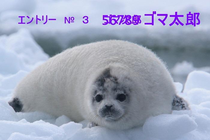 c0229170_21285594.jpg
