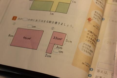 e0201060_19535379.jpg