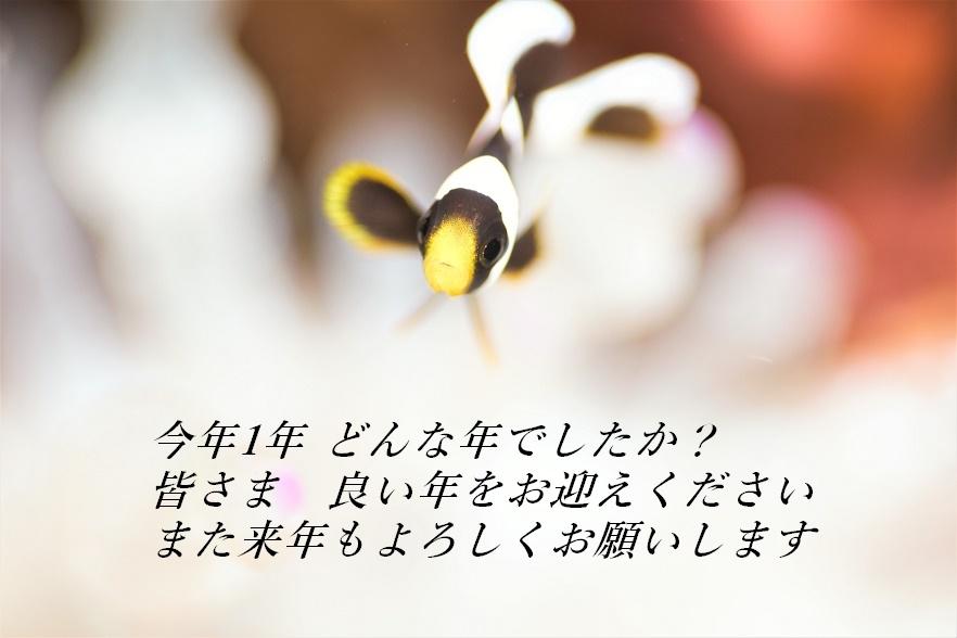 a0109187_08002024.jpg