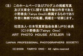 a0217029_11412350.jpg