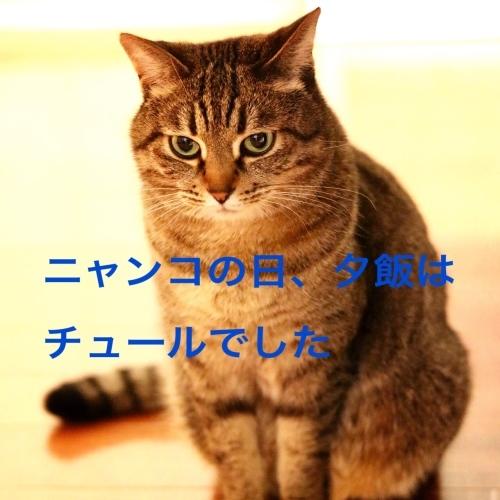 c0366722_05411467.jpg