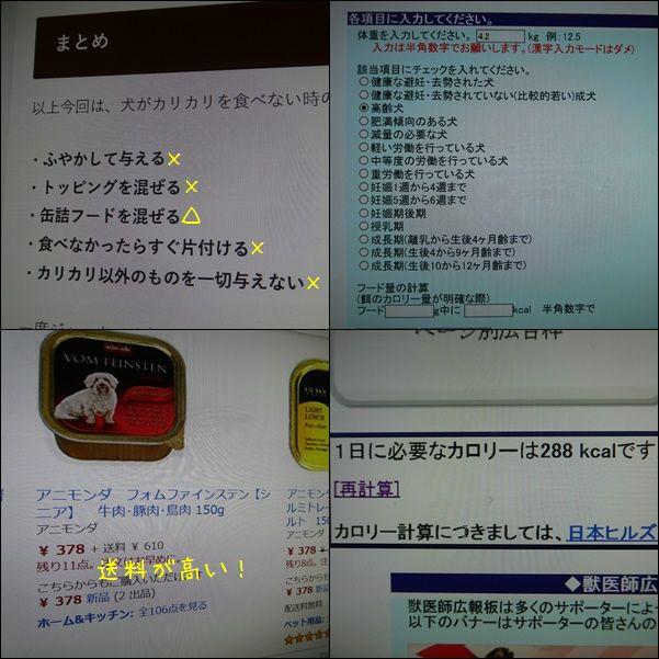 e0234881_21153776.jpg