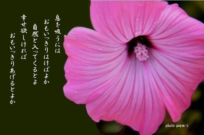 e0363836_09534101.jpg