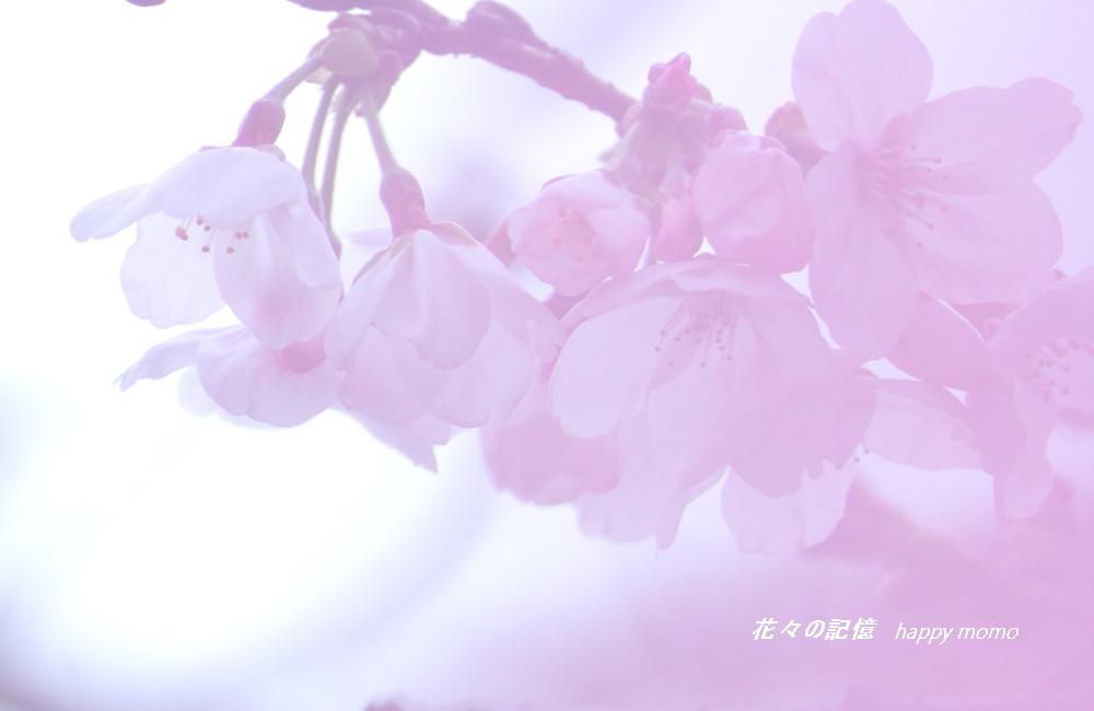 c0357781_18203994.jpg