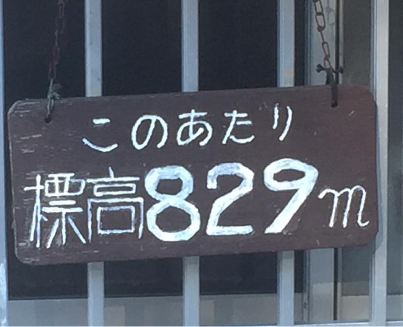 e0353125_12022739.jpg