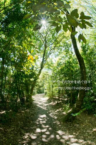 a0323742_20073992.jpg