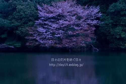 a0323742_22274200.jpg