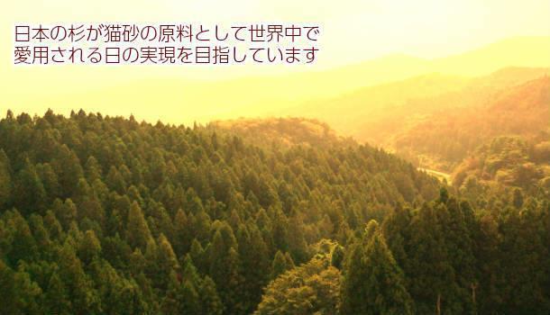 a0350686_16033301.jpg