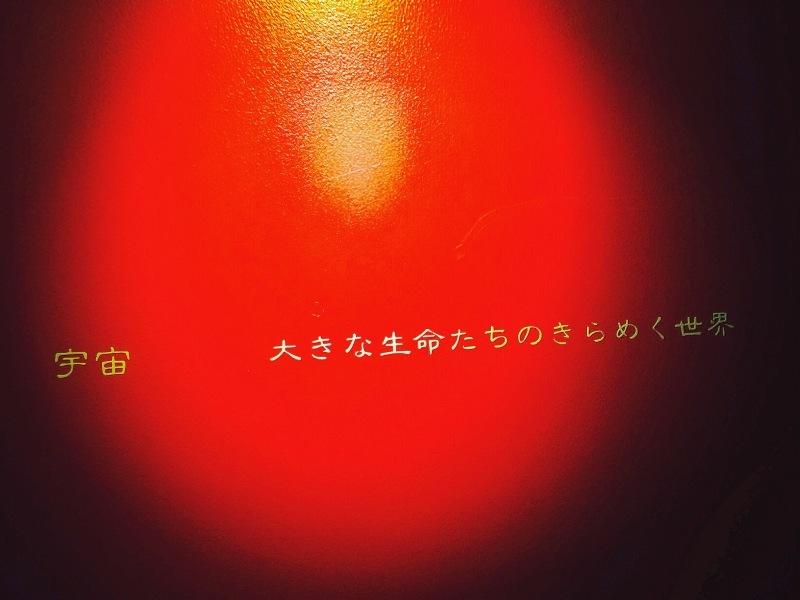 c0195362_19391433.jpg