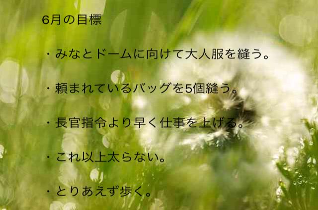 c0291710_11405798.jpg