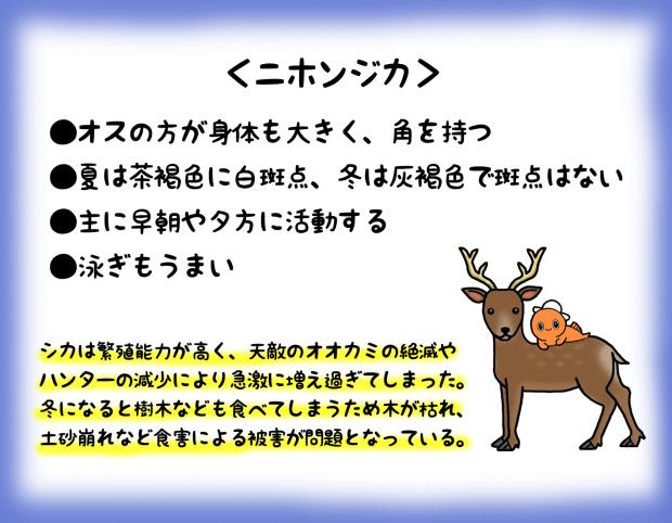 c0259934_14344250.jpg