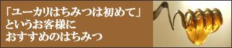 a0151085_16482933.jpg